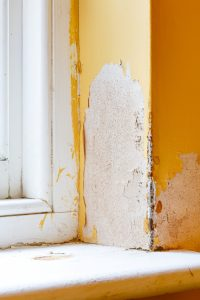 damp-affecting-a-property-could-cost-to-rectify